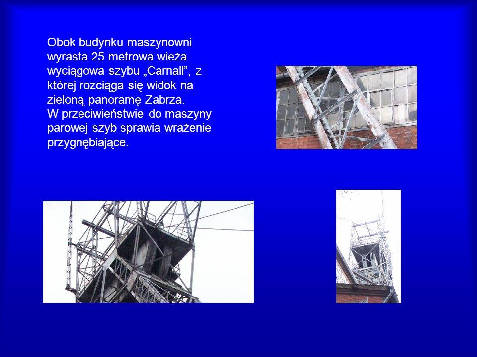 Obok budynku maszynowni wyrasta 25 metrowa wieża wyciągowa szybu Carnall, z której rozciąga się widok na zieloną panoramę Zabrza. W przeciwieństwie do