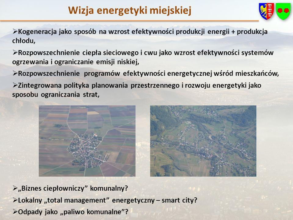 Kogeneracja jako sposób na wzrost efektywności produkcji energii + produkcja chłodu, Rozpowszechnienie ciepła sieciowego i cwu jako wzrost efektywności systemów ogrzewania i ograniczanie emisji niskiej, Rozpowszechnienie programów efektywności energetycznej wśród mieszkańców, Zintegrowana polityka planowania przestrzennego i rozwoju energetyki jako sposobu ograniczania strat, Biznes ciepłowniczy komunalny.