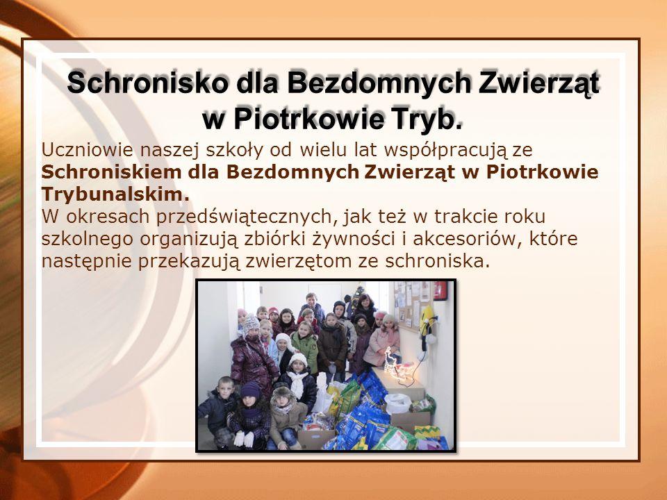 Uczniowie naszej szkoły od wielu lat współpracują ze Schroniskiem dla Bezdomnych Zwierząt w Piotrkowie Trybunalskim.