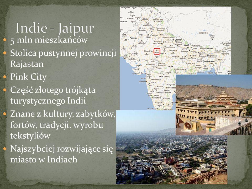 5 mln mieszkańców Stolica pustynnej prowincji Rajastan Pink City Część złotego trójkąta turystycznego Indii Znane z kultury, zabytków, fortów, tradycji, wyrobu tekstyliów Najszybciej rozwijające się miasto w Indiach