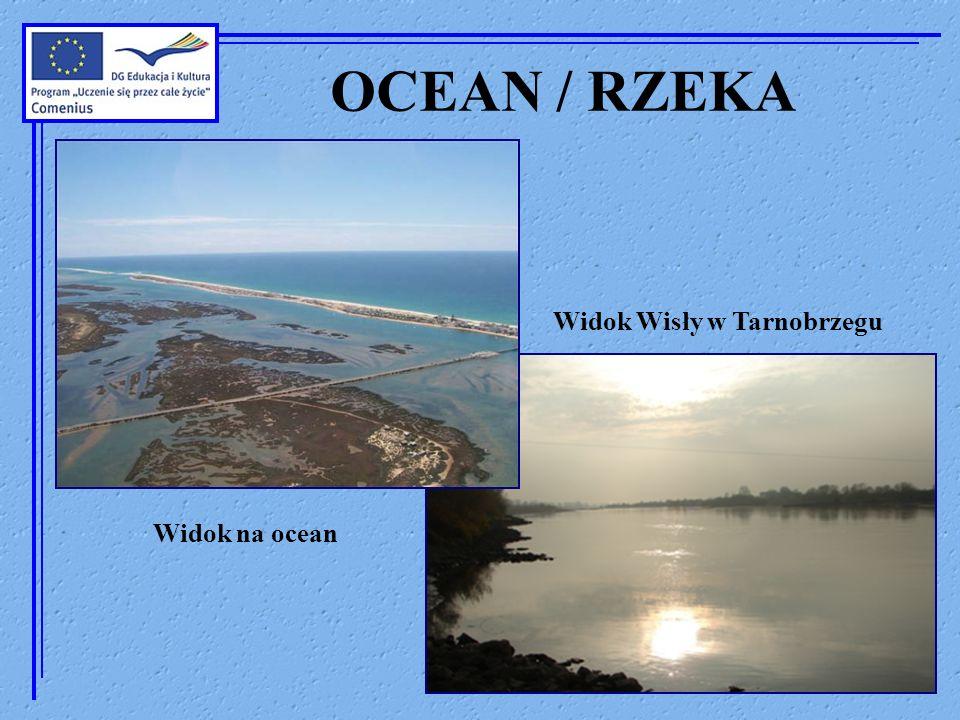 OCEAN / RZEKA Widok na ocean Widok Wisły w Tarnobrzegu