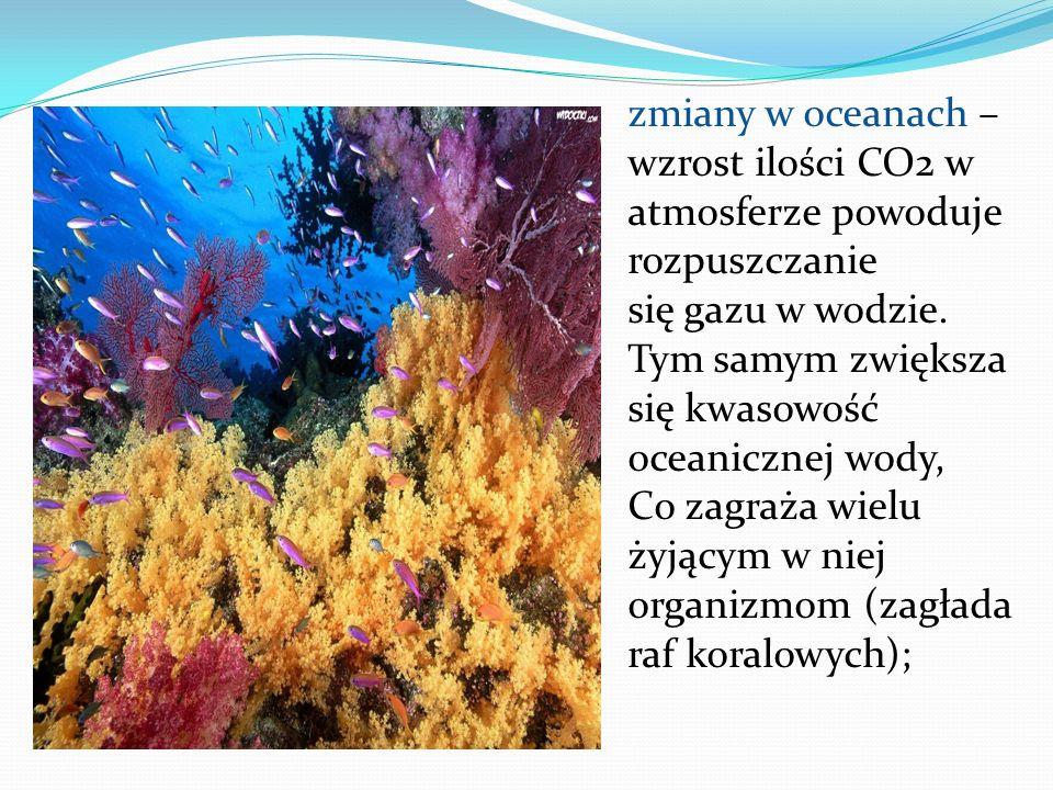 zmiany w oceanach – wzrost ilości CO2 w atmosferze powoduje rozpuszczanie się gazu w wodzie. Tym samym zwiększa się kwasowość oceanicznej wody, Co zag