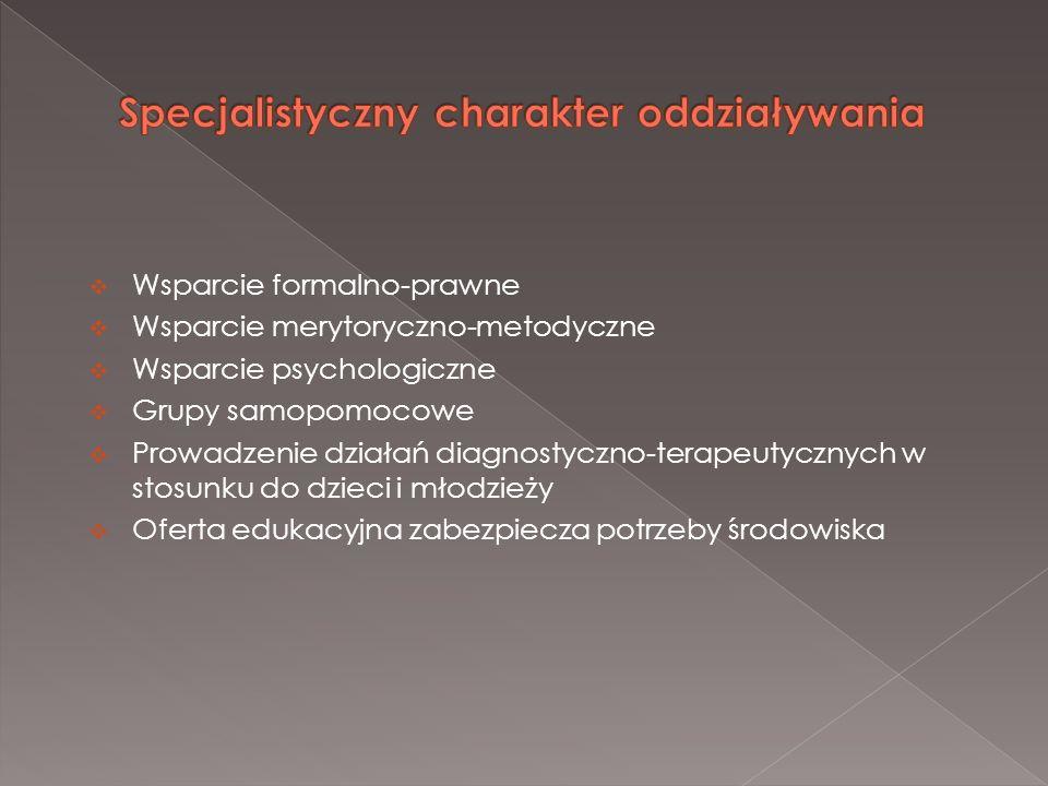 Wsparcie formalno-prawne Wsparcie merytoryczno-metodyczne Wsparcie psychologiczne Grupy samopomocowe Prowadzenie działań diagnostyczno-terapeutycznych