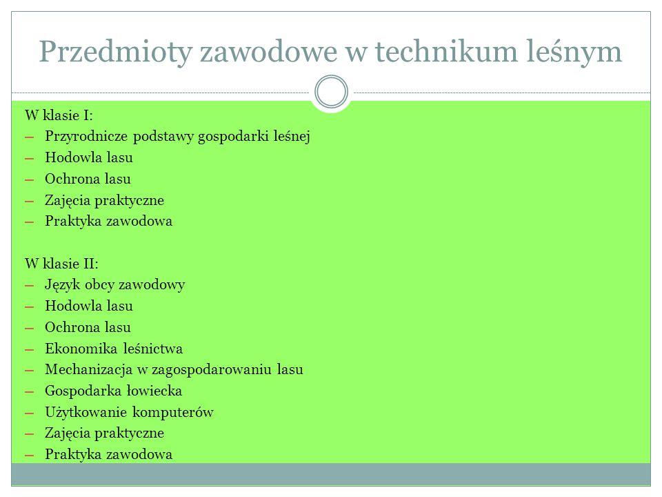 Przedmioty zawodowe w technikum leśnym W klasie I: Przyrodnicze podstawy gospodarki leśnej Hodowla lasu Ochrona lasu Zajęcia praktyczne Praktyka zawod