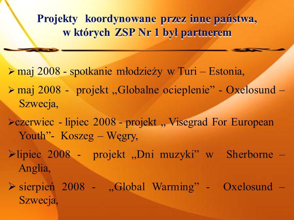 maj 2008 - spotkanie młodzieży w Turi – Estonia, maj 2008 - projekt Globalne ocieplenie - Oxelosund – Szwecja, czerwiec - lipiec 2008 - projekt Visegrad For European Youth- Koszeg – Węgry, lipiec 2008 - projekt Dni muzyki w Sherborne – Anglia, sierpień 2008 - Global Warming - Oxelosund – Szwecja,