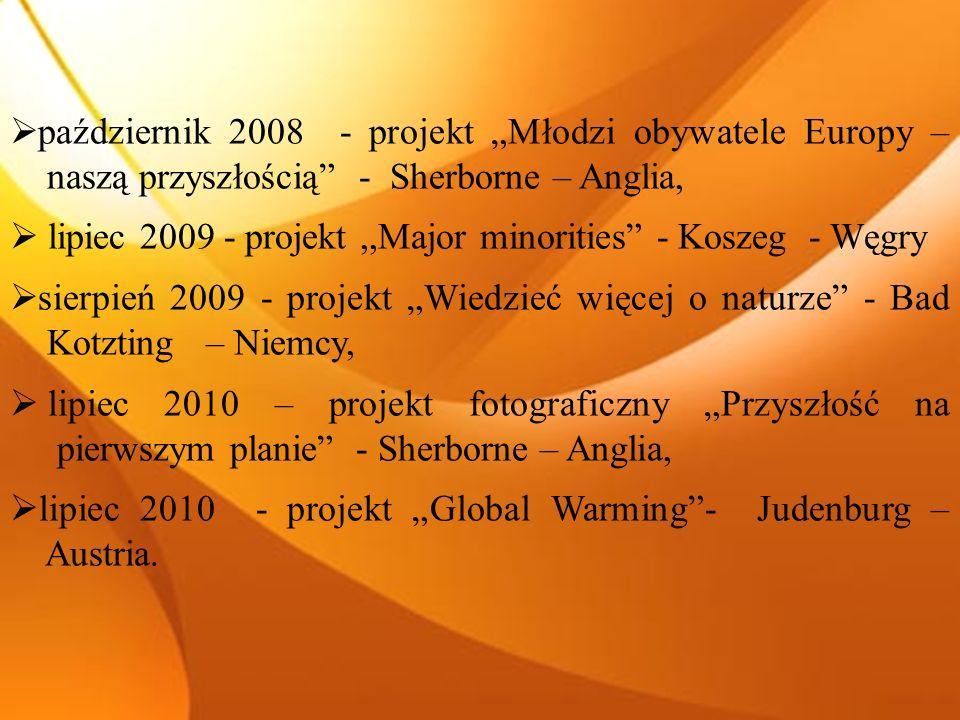 październik 2008 - projekt Młodzi obywatele Europy – naszą przyszłością - Sherborne – Anglia, lipiec 2009 - projekt,,Major minorities - Koszeg - Węgry sierpień 2009 - projekt Wiedzieć więcej o naturze - Bad Kotzting – Niemcy, lipiec 2010 – projekt fotograficzny Przyszłość na pierwszym planie - Sherborne – Anglia, lipiec 2010 - projekt Global Warming- Judenburg – Austria.