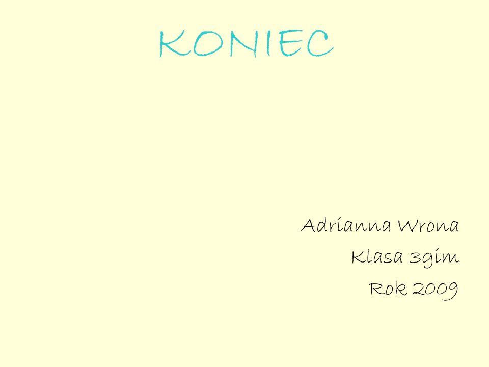 KONIEC Adrianna Wrona Klasa 3gim Rok 2009