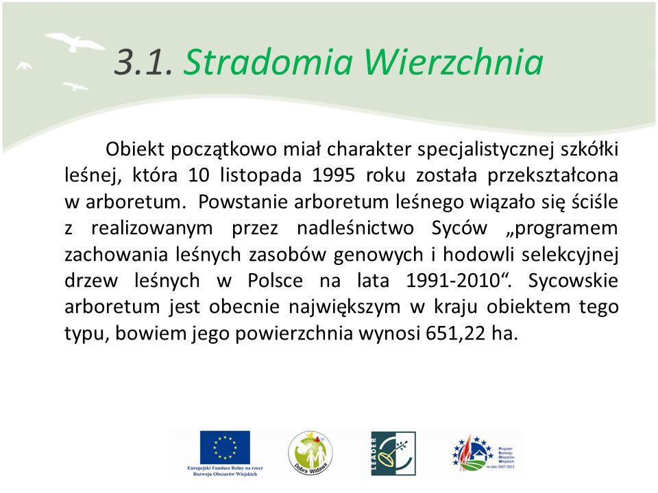 3.1. Stradomia Wierzchnia Obiekt początkowo miał charakter specjalistycznej szkółki leśnej, która 10 listopada 1995 roku została przekształcona w arbo