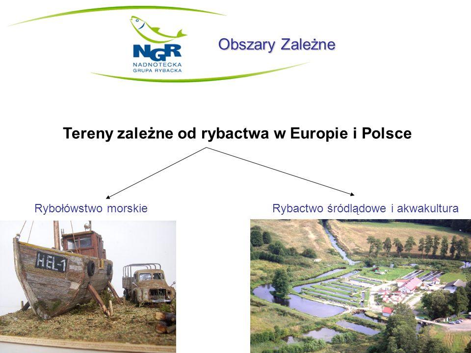 Obszary Zależne Tereny zależne od rybactwa w Europie i Polsce Rybołówstwo morskie Rybactwo śródlądowe i akwakultura