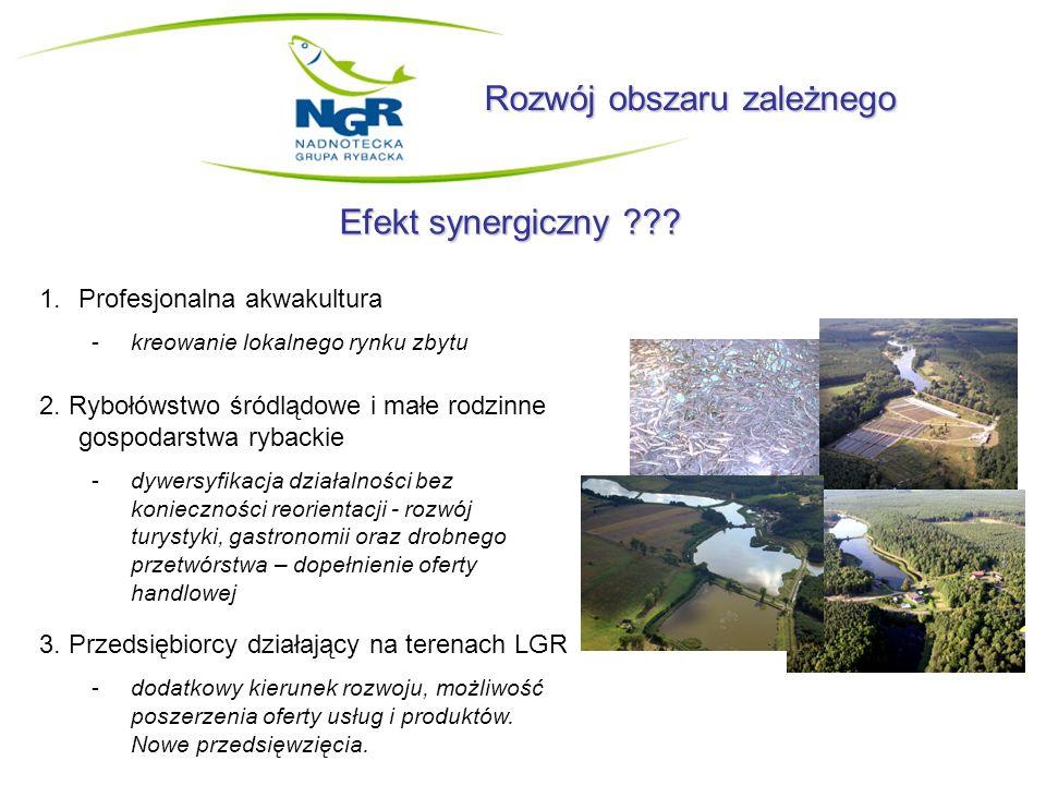 Rozwój obszaru zależnego Efekt synergiczny ??? 1.Profesjonalna akwakultura -kreowanie lokalnego rynku zbytu 2. Rybołówstwo śródlądowe i małe rodzinne