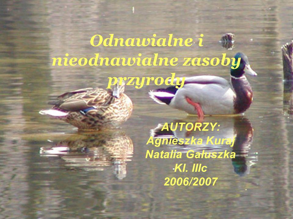 Odnawialne i nieodnawialne zasoby przyrody AUTORZY: Agnieszka Kuraj Natalia Gałuszka Kl. lllc 2006/2007