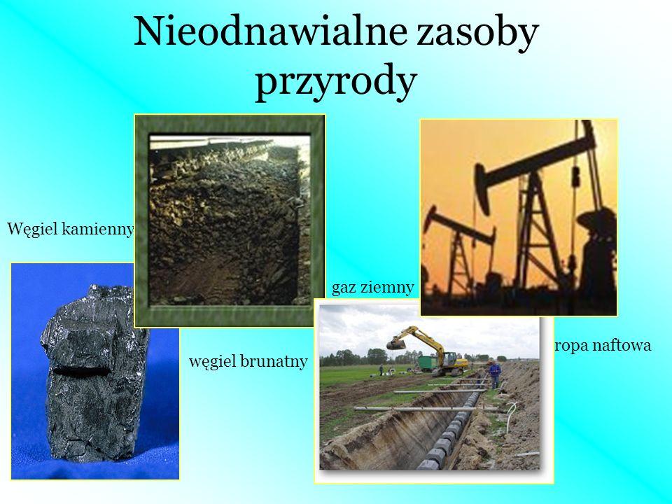 Nieodnawialne zasoby przyrody Węgiel kamienny węgiel brunatny gaz ziemny ropa naftowa