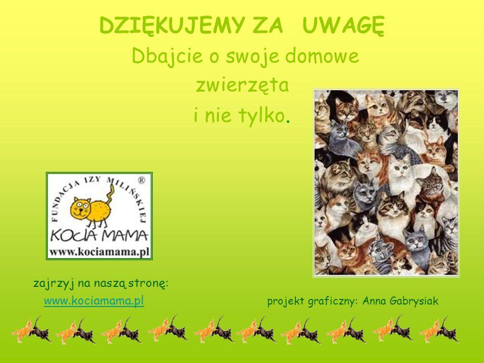 DZIĘKUJEMY ZA UWAGĘ Dbajcie o swoje domowe zwierzęta i nie tylko. zajrzyj na naszą stronę: www.kociamama.pl projekt graficzny: Anna Gabrysiak