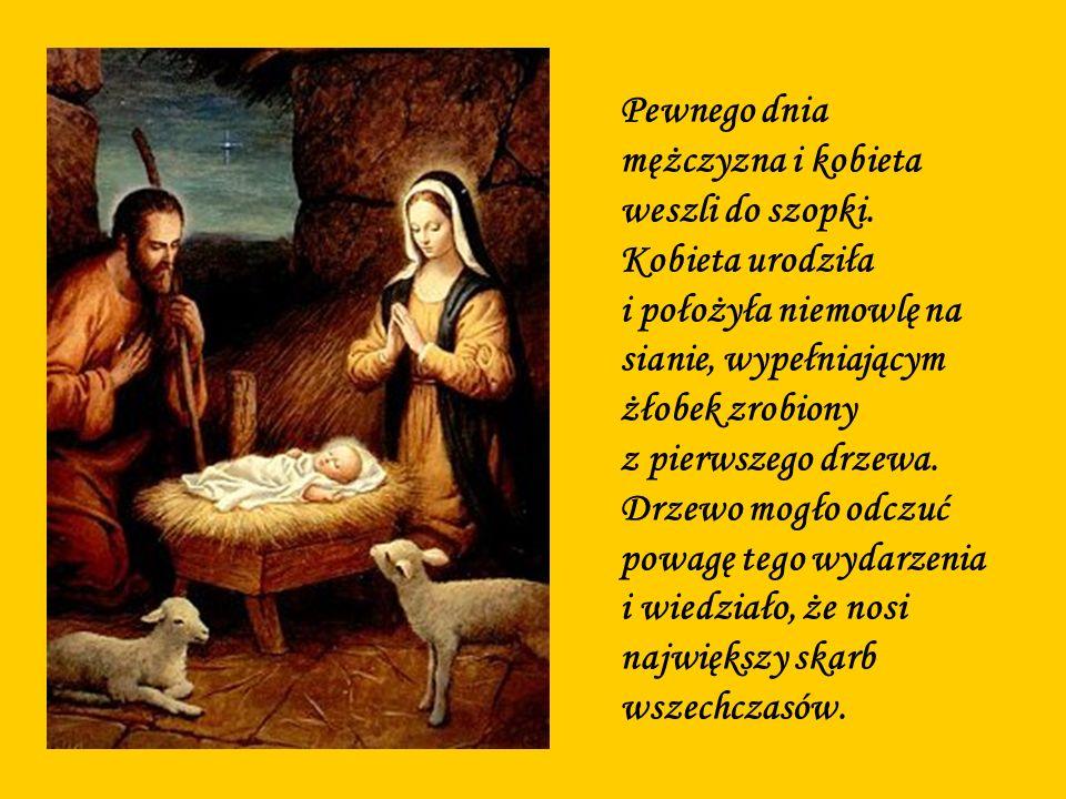 Pewnego dnia mężczyzna i kobieta weszli do szopki. Kobieta urodziła i położyła niemowlę na sianie, wypełniającym żłobek zrobiony z pierwszego drzewa.