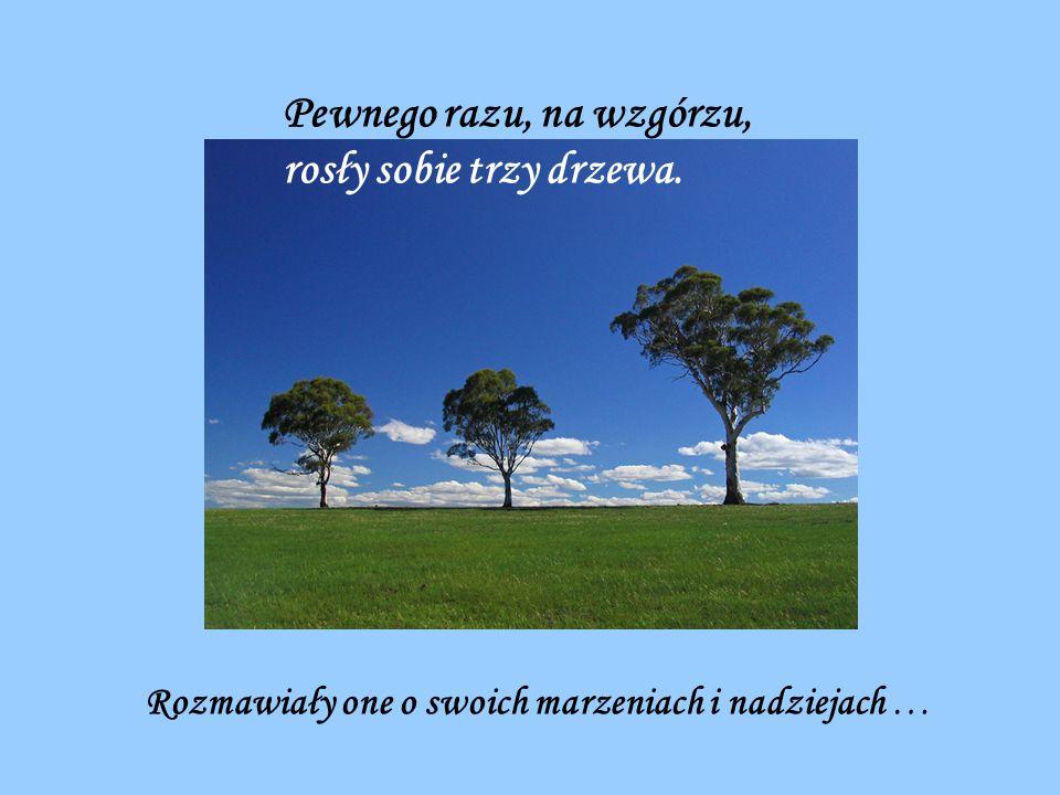 Pewnego razu, na wzgórzu, rosły sobie trzy drzewa. Rozmawiały one o swoich marzeniach i nadziejach …