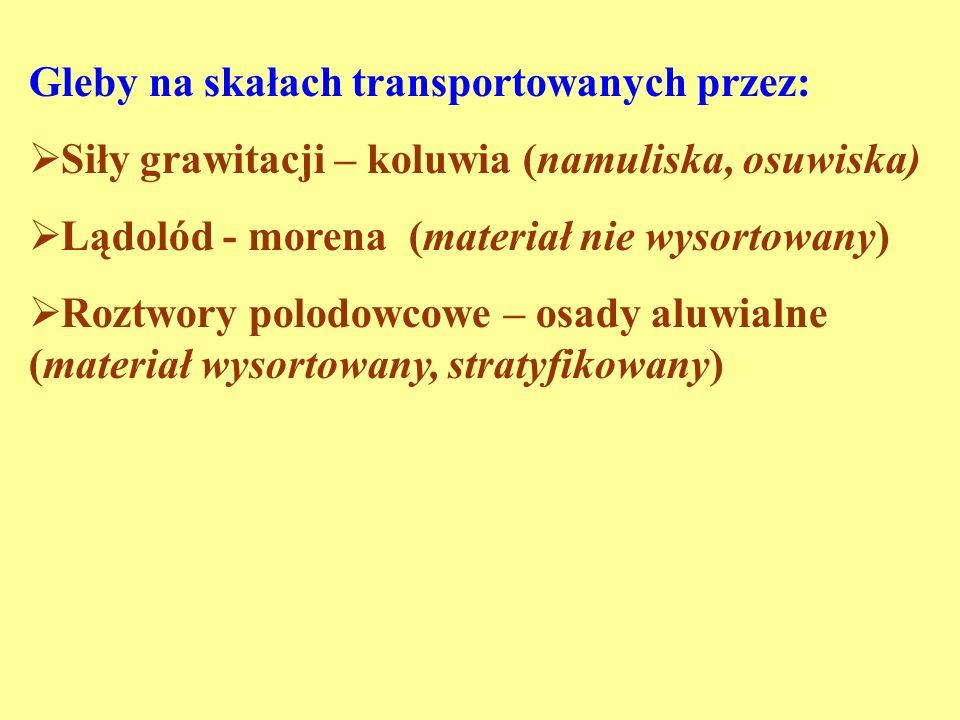Gleby na skałach transportowanych przez: Siły grawitacji – koluwia (namuliska, osuwiska) Lądolód - morena (materiał nie wysortowany) Roztwory polodowc