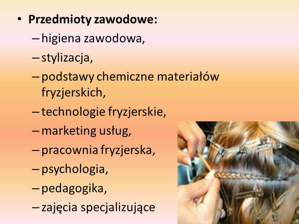 Przedmioty zawodowe: – higiena zawodowa, – stylizacja, – podstawy chemiczne materiałów fryzjerskich, – technologie fryzjerskie, – marketing usług, – p