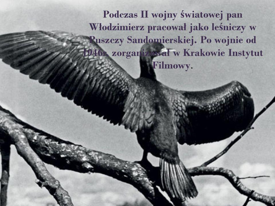 Podczas II wojny ś wiatowej pan Włodzimierz pracował jako le ś niczy w Puszczy Sandomierskiej. Po wojnie od 1946r. zorganizował w Krakowie Instytut Fi