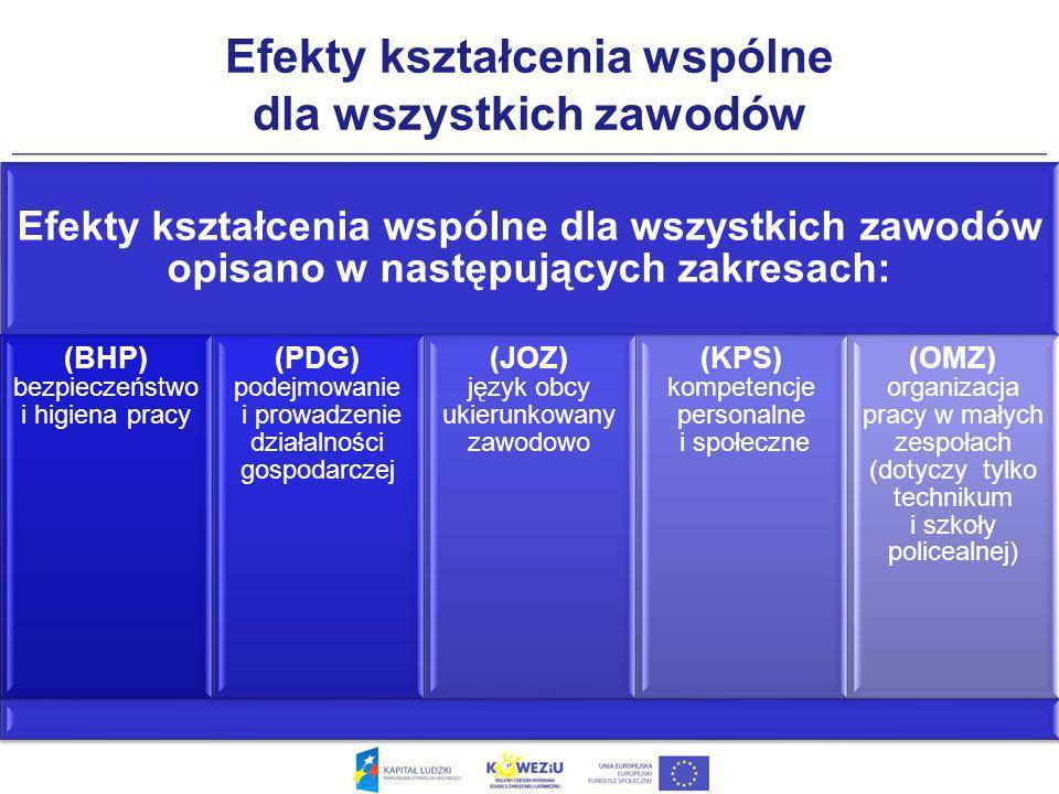 Efekty kształcenia wspólne dla wszystkich zawodów Efekty kształcenia wspólne dla wszystkich zawodów opisano w następujących zakresach: (BHP) bezpieczeństwo i higiena pracy (PDG) podejmowanie i prowadzenie działalności gospodarczej (JOZ) język obcy ukierunkowany zawodowo (KPS) kompetencje personalne i społeczne (OMZ) organizacja pracy w małych zespołach (dotyczy tylko technikum i szkoły policealnej)
