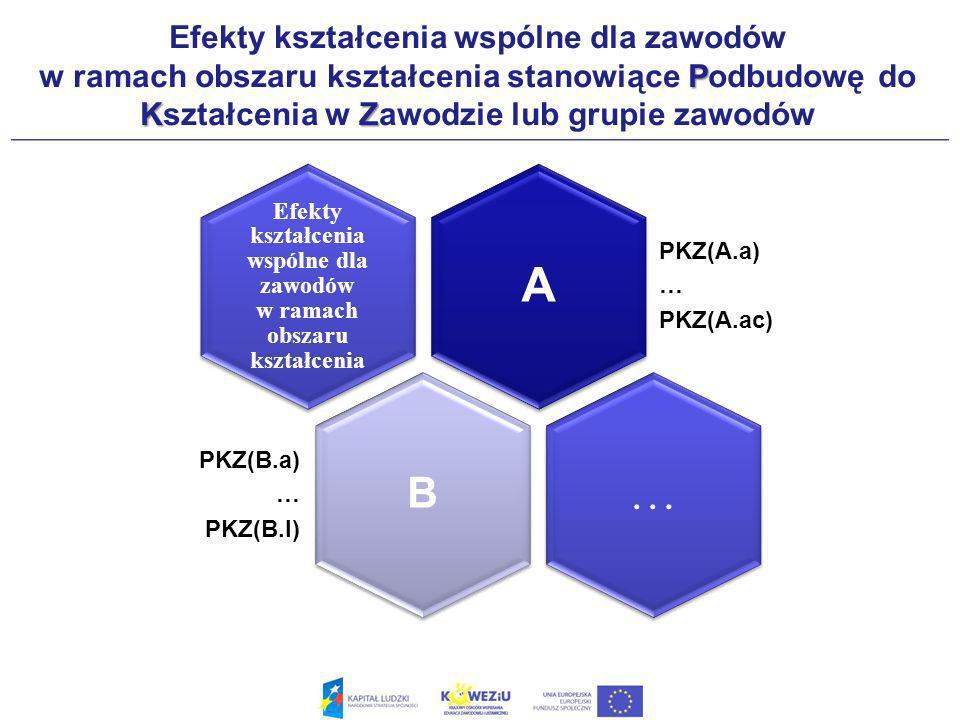 P KZ Efekty kształcenia wspólne dla zawodów w ramach obszaru kształcenia stanowiące Podbudowę do Kształcenia w Zawodzie lub grupie zawodów A PKZ(A.a) … PKZ(A.ac) Efekty kształcenia wspólne dla zawodów w ramach obszaru kształcenia B PKZ(B.a) … PKZ(B.l) …