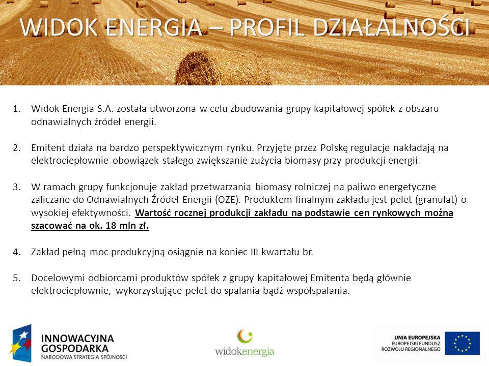 WIDOK ENERGIA – PROFIL DZIAŁALNOŚCI 1.Widok Energia S.A.