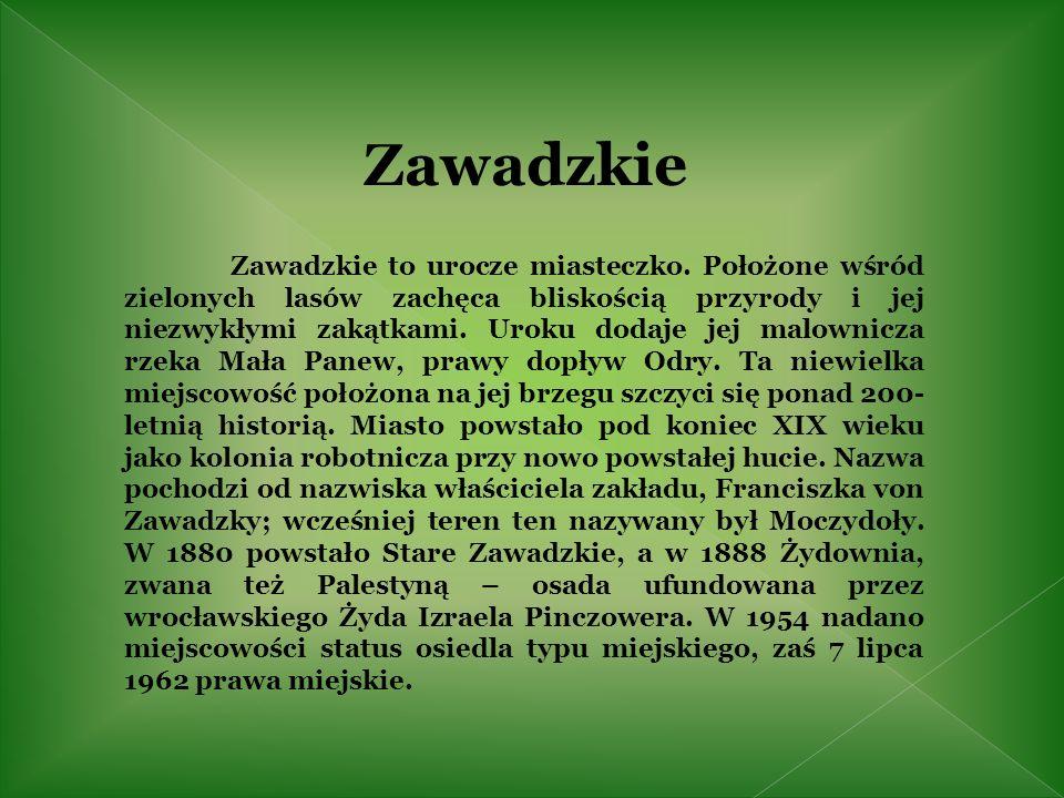 Przy ul.Andrzeja osiedle hutnicze z około 1900 roku m.in.