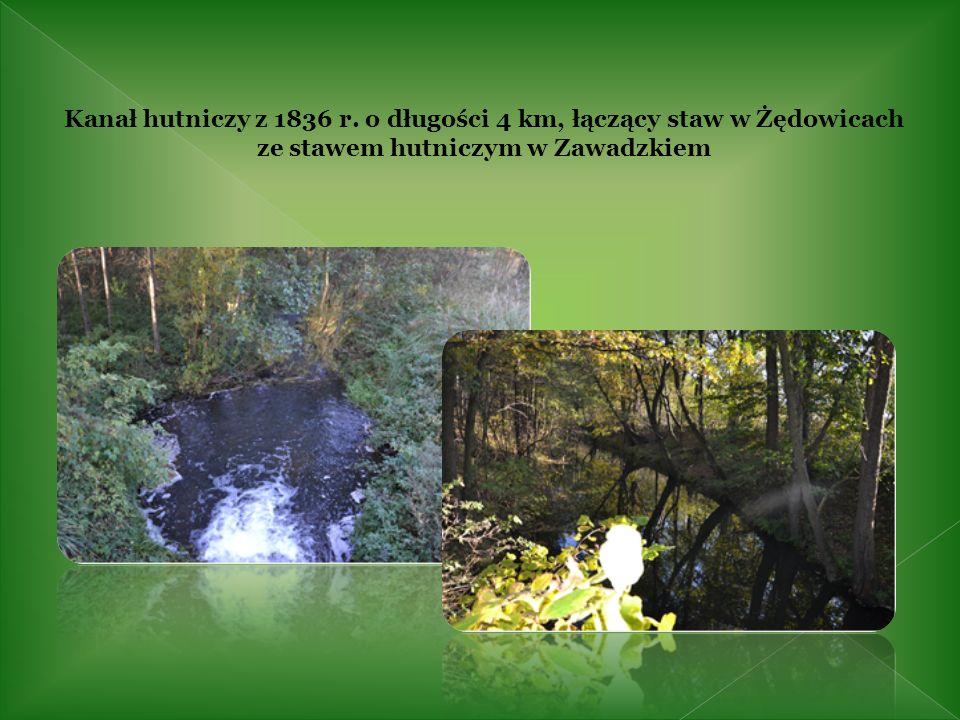 Centrum Edukacji Leśno -Przyrodniczej przy Nadleśnictwie Zawadzkie