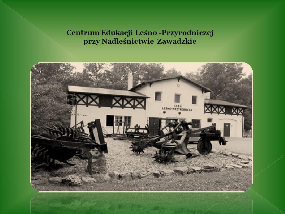 Zameczek myśliwski (Kąty) wybudowany przez hr.