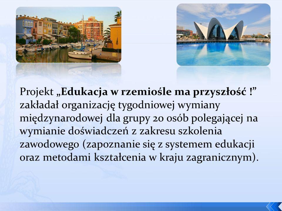 Grupę 20 osób stanowili: a)pracownicy Izby Rzemieślni- czej oraz Małej i Średniej Przedsiębiorczości w Katowicach; b) pracownicy śląskich Cechów branżowych (organizacji terytorial- nych Izby katowickiej), odpowiedzialni za kształcenie zawodowe; c) przedstawiciele Komisji Egzaminacyjnych w Izbie Rzemieślniczej oraz Małej i Średniej Przedsiębiorczości w Katowicach; d) przedsiębiorcy zrzeszeni w Cechu lub Izbie Rzemieślniczej w Katowicach, e) przedstawiciele różnych zawodów rzemieślniczych; f) nauczyciele szkół zawodowych, doradcy zawodowi.