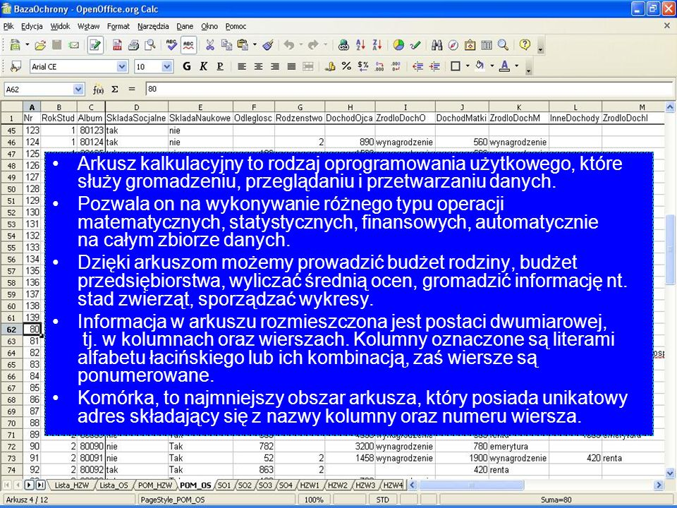 Arkusz kalkulacyjny to rodzaj oprogramowania użytkowego, które służy gromadzeniu, przeglądaniu i przetwarzaniu danych. Pozwala on na wykonywanie różne