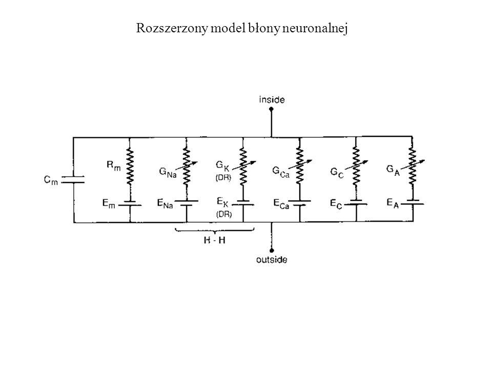 Rozszerzony model błony neuronalnej