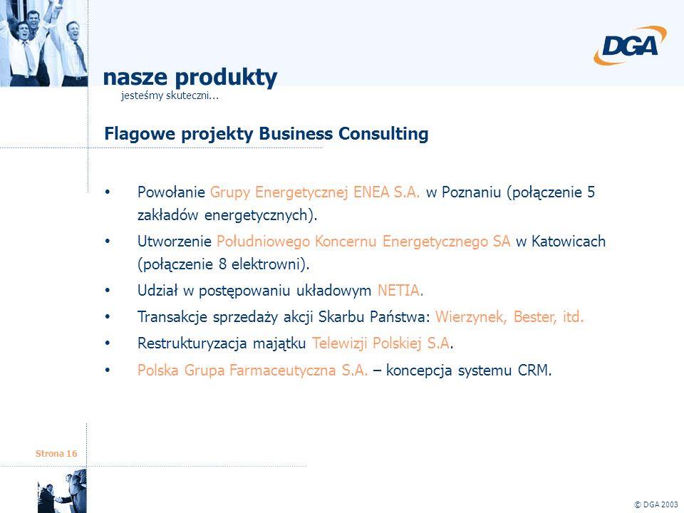 Strona 16 © DGA 2003 Flagowe projekty Business Consulting Powołanie Grupy Energetycznej ENEA S.A. w Poznaniu (połączenie 5 zakładów energetycznych). U