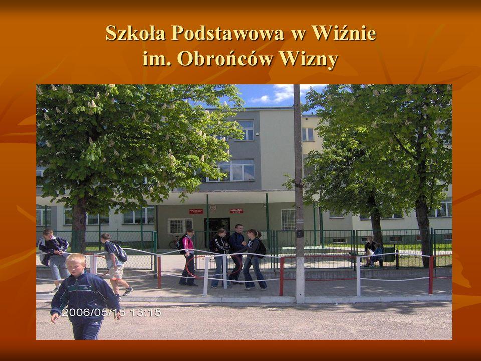 Biblioteka szkolna Opiekun –p.