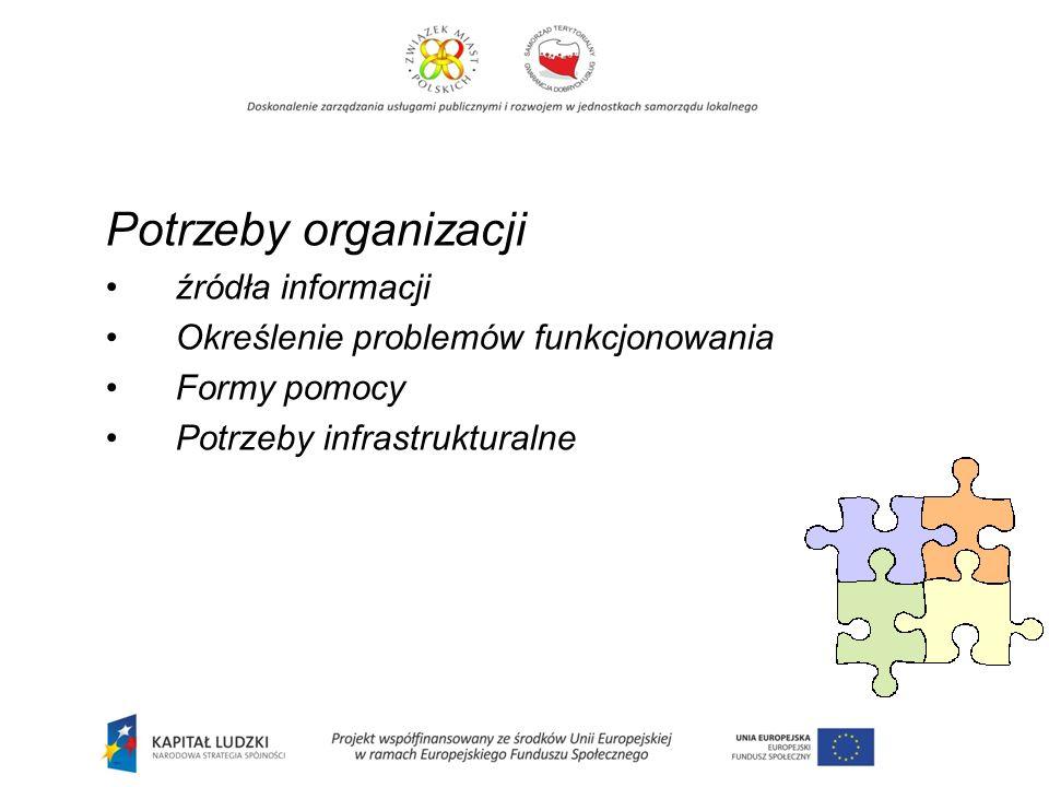 Potrzeby organizacji źródła informacji Określenie problemów funkcjonowania Formy pomocy Potrzeby infrastrukturalne