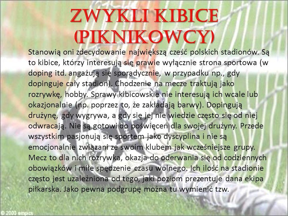 ZWYKLI KIBICE (PIKNIKOWCY) Stanowią oni zdecydowanie największą cześć polskich stadionów.