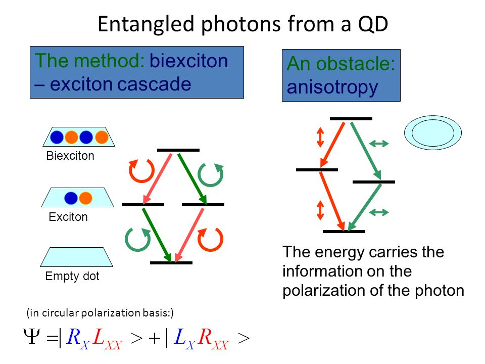 An obstacle: anisotropy The method: biexciton – exciton cascade The energy carries the information on the polarization of the photon Biexciton Exciton
