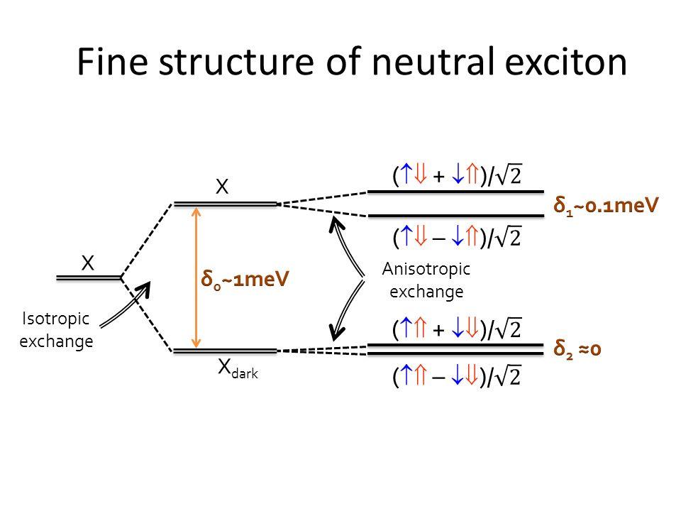 Zalety QD jako źródeł światła: -Duża wydajność kwantowa -Duża wartość molowego współczynnika ekstynkcji (przekroju czynnego na oddziaływanie ze światłem) -Szerokie pasmo wzbudzenia -Wąskie pasmo emisji (FWHM ~25-40 nm) -Duże przesunięcie Stokesa -Duża odporność na fotowybielanie -Długi czas życia stanu wzbudzonego Remigiusz Worch, IF PAN