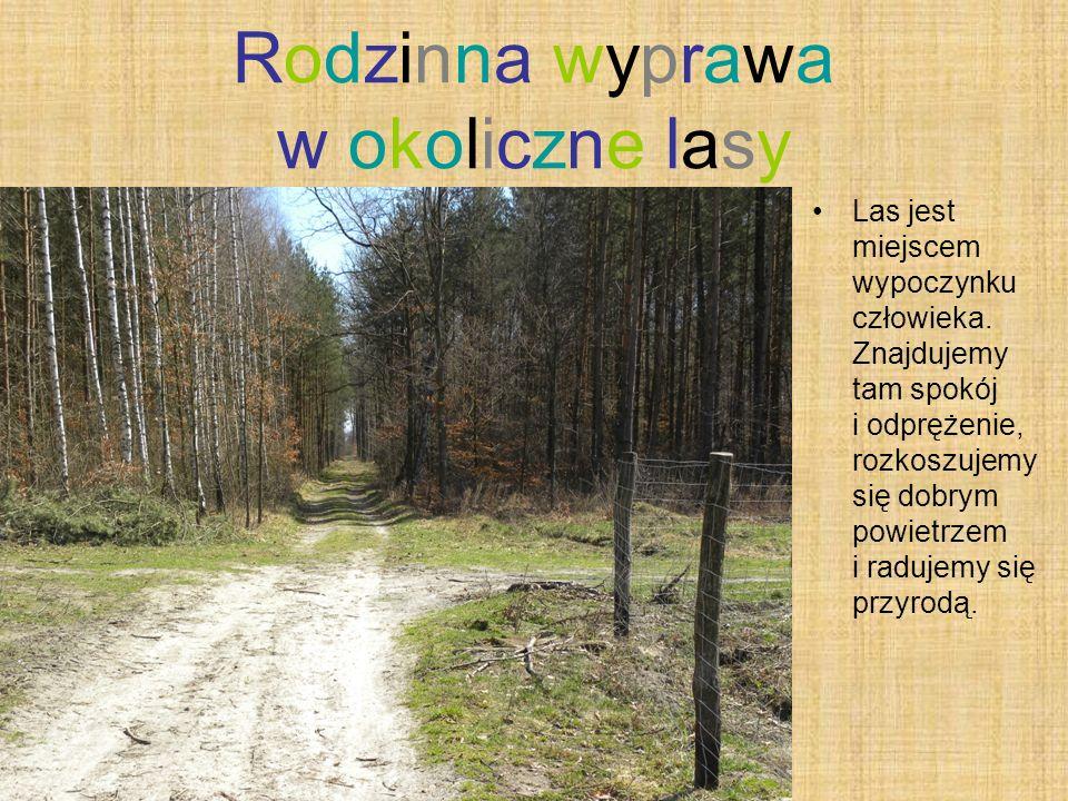 Rodzinna wyprawa w okoliczne lasy Las jest miejscem wypoczynku człowieka. Znajdujemy tam spokój i odprężenie, rozkoszujemy się dobrym powietrzem i rad