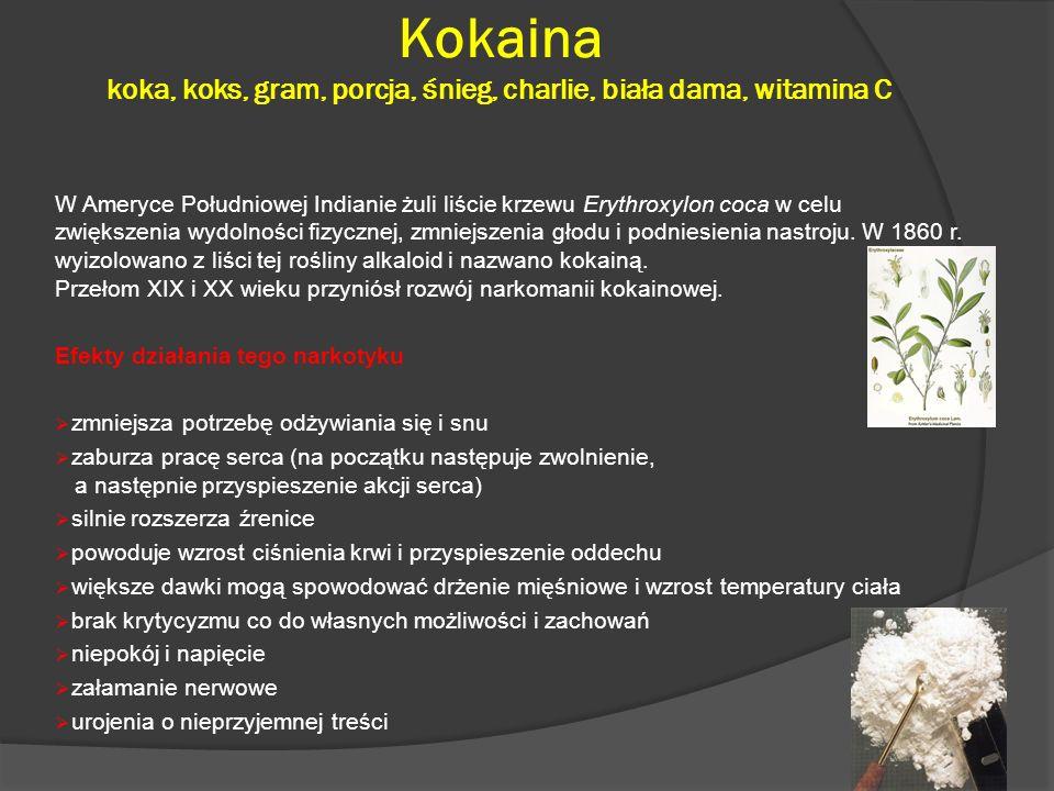 Kokaina koka, koks, gram, porcja, śnieg, charlie, biała dama, witamina C W Ameryce Południowej Indianie żuli liście krzewu Erythroxylon coca w celu zwiększenia wydolności fizycznej, zmniejszenia głodu i podniesienia nastroju.