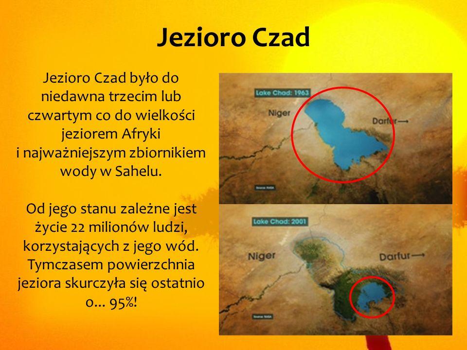Jezioro Czad Jezioro Czad było do niedawna trzecim lub czwartym co do wielkości jeziorem Afryki i najważniejszym zbiornikiem wody w Sahelu. Od jego st