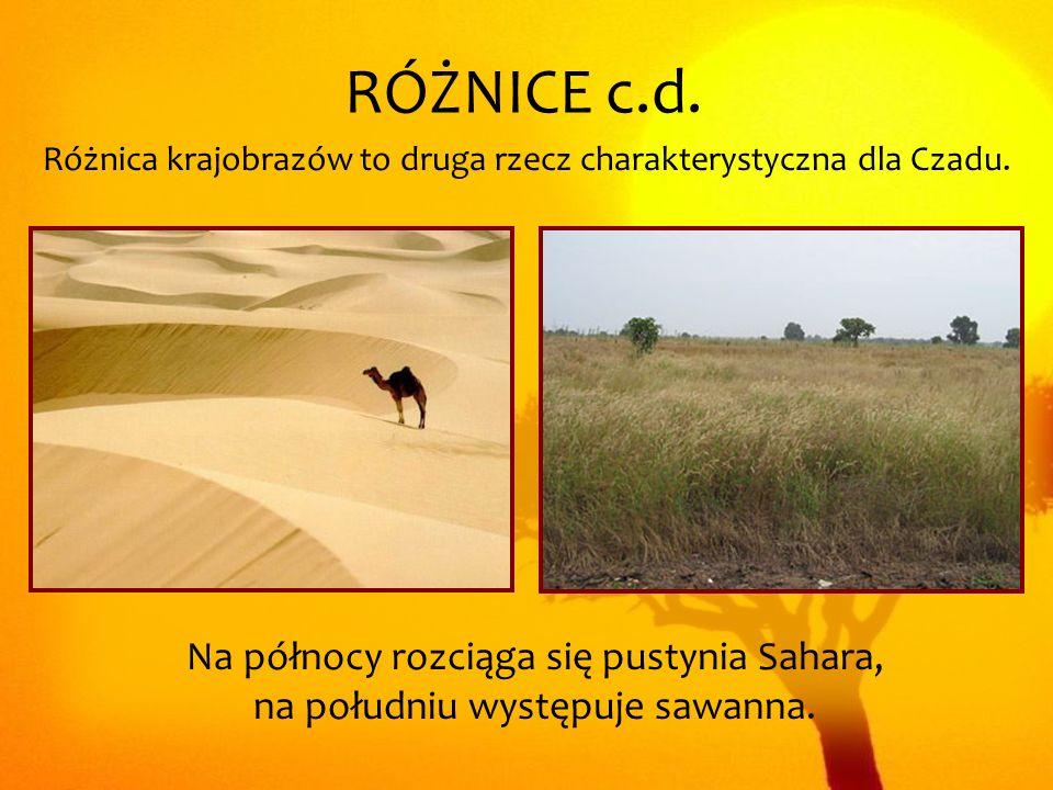 Różnica krajobrazów to druga rzecz charakterystyczna dla Czadu. RÓŻNICE c.d. Na północy rozciąga się pustynia Sahara, na południu występuje sawanna.