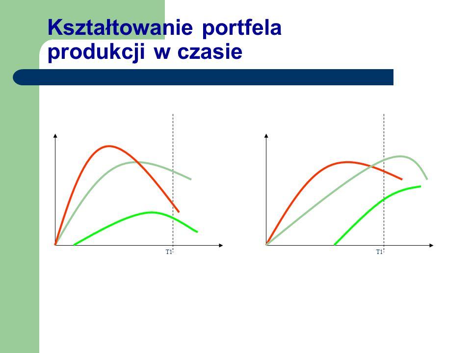 Kształtowanie portfela produkcji w czasie T1