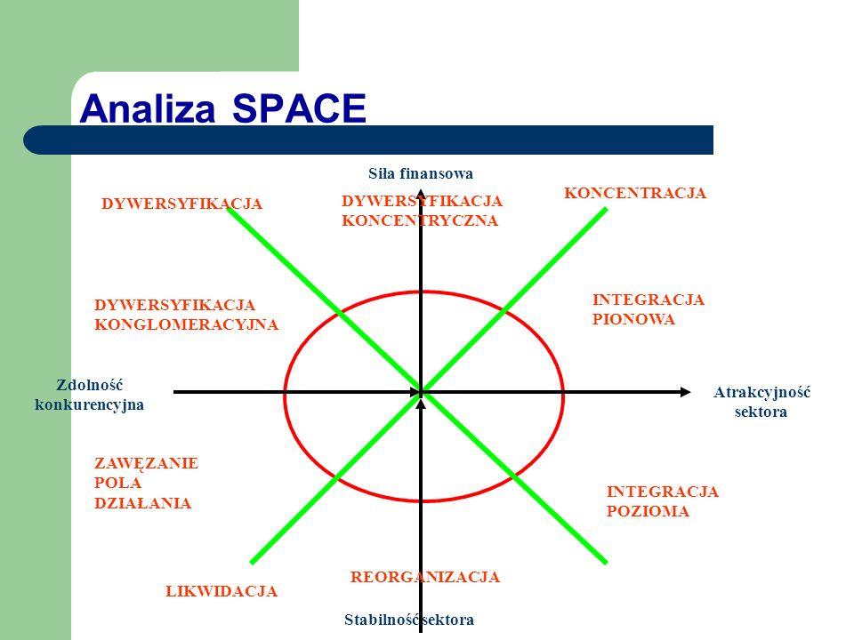 Kryteria oceny w analizie SPACE