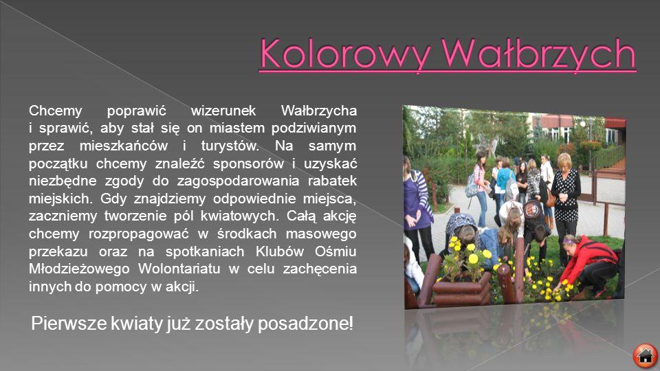 Chcemy poprawić wizerunek Wałbrzycha i sprawić, aby stał się on miastem podziwianym przez mieszkańców i turystów. Na samym początku chcemy znaleźć spo