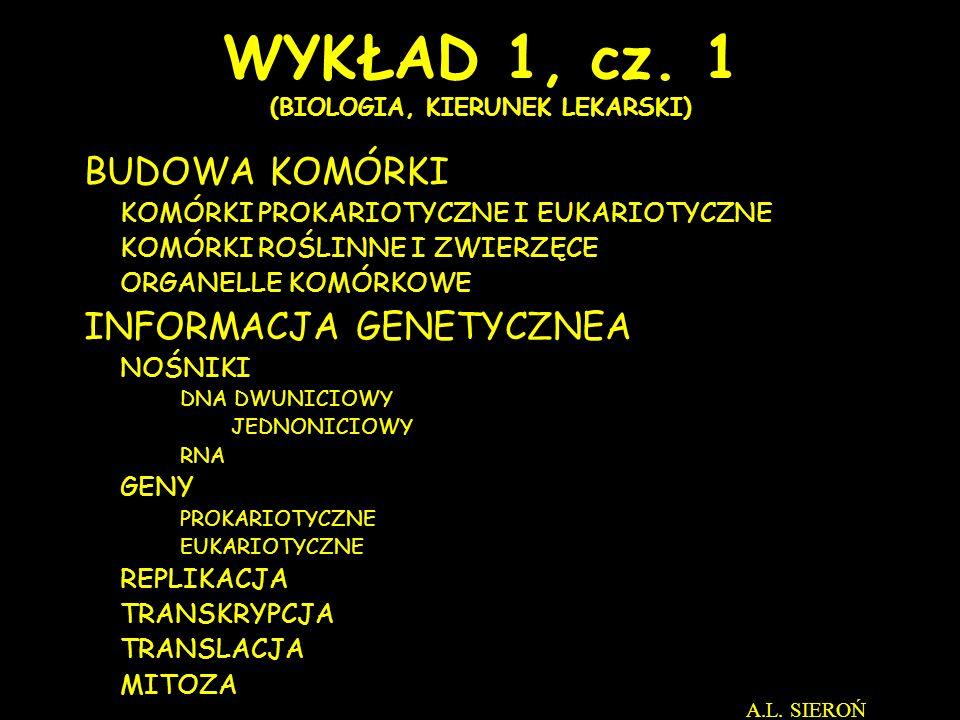 Pęcherzyki przejściowe Pęcherzyki wydzielnicze Błona komórkowa CYTOPLAZMAZEWNĄTRZ A.L.