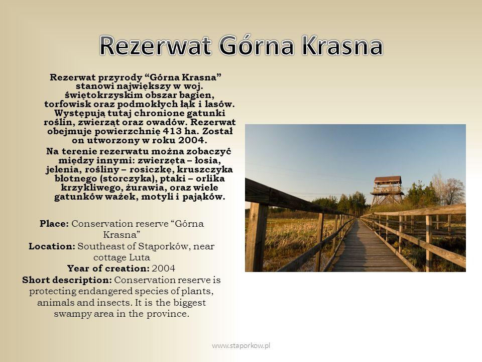 Rezerwat przyrody Górna Krasna stanowi największy w woj. świętokrzyskim obszar bagien, torfowisk oraz podmokłych łąk i lasów. Występują tutaj chronion