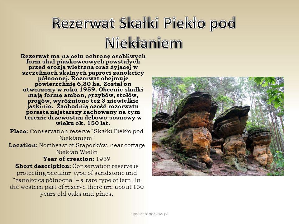 Rezerwat ma na celu ochronę osobliwych form skał piaskowcowych powstałych przed erozją wietrzną oraz żyjącej w szczelinach skalnych paproci zanokcicy