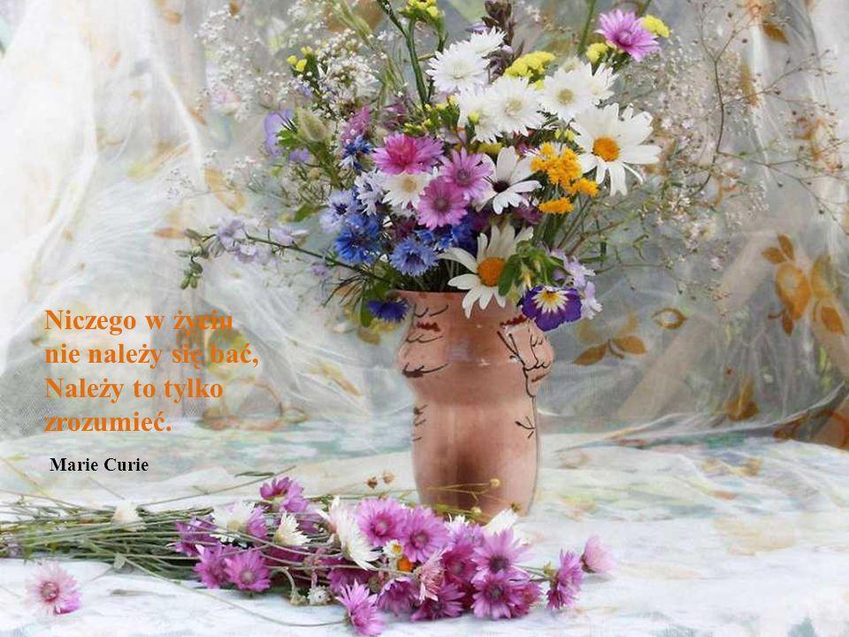 Niczego w życiu nie należy się bać, Należy to tylko zrozumieć. Marie Curie
