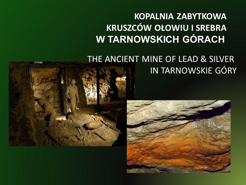 KOPALNIA ZABYTKOWA KRUSZCÓW OŁOWIU I SREBRA W TARNOWSKICH GÓRACH THE ANCIENT MINE OF LEAD & SILVER IN TARNOWSKIE GÓRY