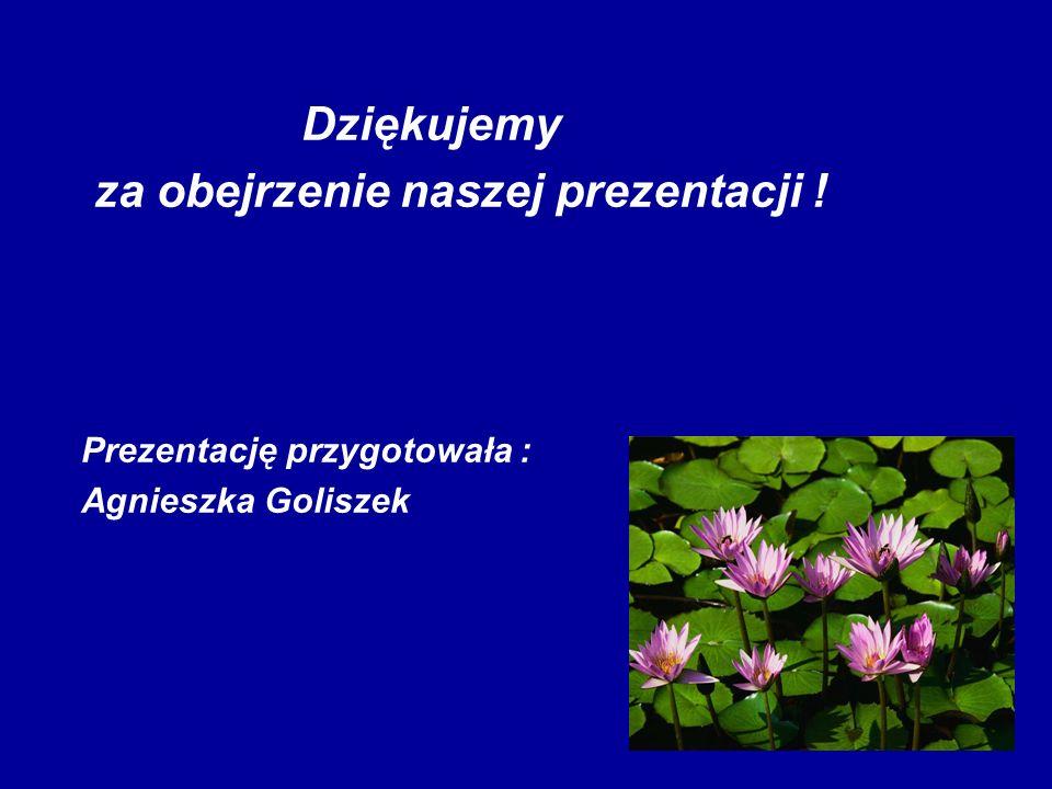 Dziękujemy za obejrzenie naszej prezentacji ! Prezentację przygotowała : Agnieszka Goliszek